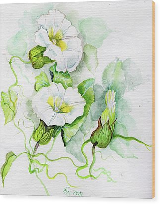 Convolvulus Wood Print by Angelina Whittaker Cook