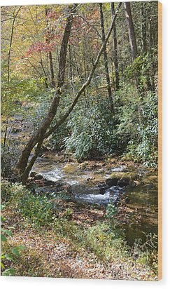 Wood Print featuring the photograph Cool Creek by Margaret Palmer