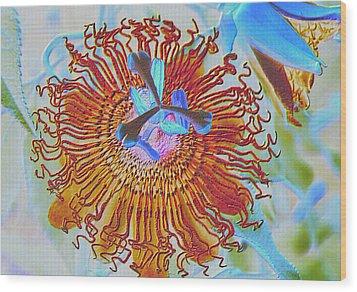 Copper Passionflower Wood Print by Rosalie Scanlon