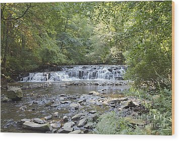 Wood Print featuring the photograph Corbetts Glen Waterfall by William Norton