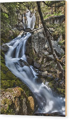 Corlieu Falls Wood Print by A A