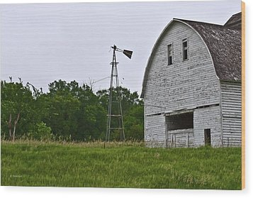 Wood Print featuring the photograph Corn Crib by Edward Peterson