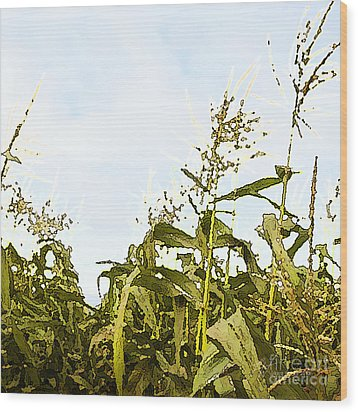 Corn In Summer Wood Print by Artist and Photographer Laura Wrede