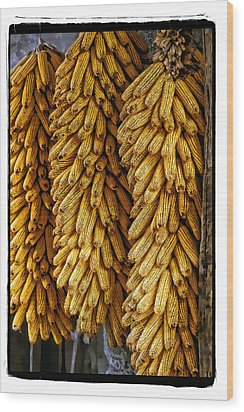 Corn  Wood Print by Mauro Celotti