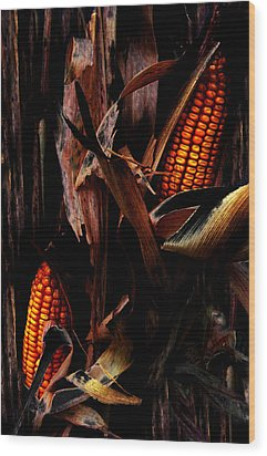 Corn Stalks Wood Print by Rachel Christine Nowicki