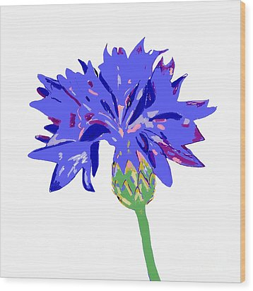 Wood Print featuring the digital art Cornflower by Barbara Moignard