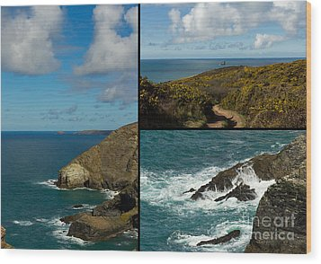 Cornwall North Coast Wood Print by Brian Roscorla