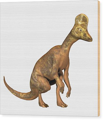 Corythosaurus Dinosaur Wood Print by Friedrich Saurer