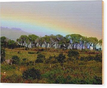 Costa Rica Rainbow Wood Print by Myrna Bradshaw