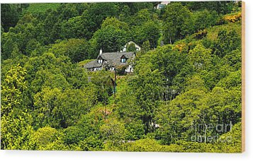 Cottage In The Woods Wood Print by Pravine Chester