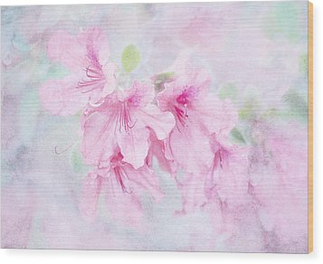Cotton Candy Wood Print by Brenda Bryant