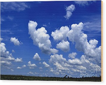 Wood Print featuring the photograph Cottoncandy Sky by Tamera James
