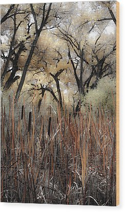 Cottonwoods And Cat Tails Wood Print by Denice Breaux