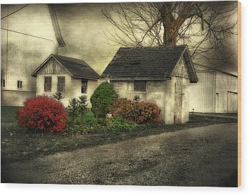 Wood Print featuring the photograph Country Charm by Mary Timman