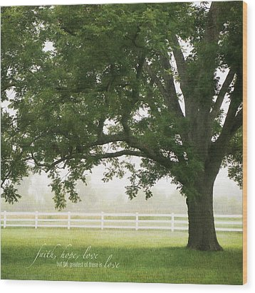 Country Fence Color Wood Print