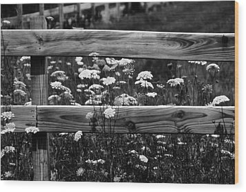 Country Flowers In Black And White Wood Print