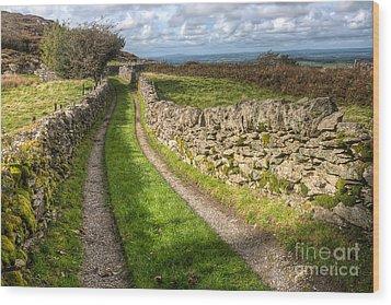 Country Lane Wood Print by Adrian Evans