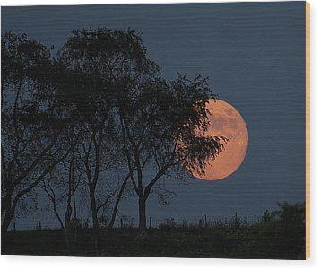 Country Moon  Wood Print by Betsy Knapp