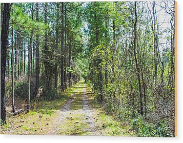 Wood Print featuring the photograph Country Path by Shannon Harrington
