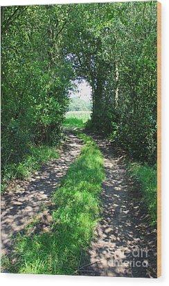 Country Road Wood Print by Carol Groenen