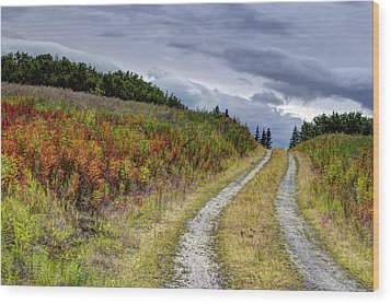 Country Road In Fall Wood Print by Michele Cornelius