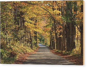 Country Roads In Autumn Wood Print