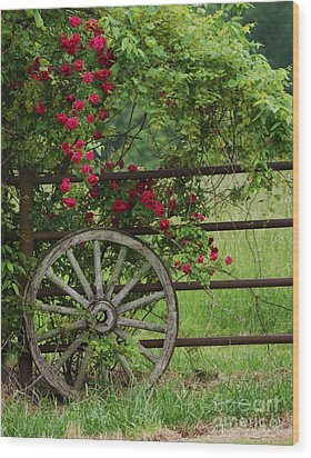 Wood Print featuring the photograph Country Simplicity by Julie Clements