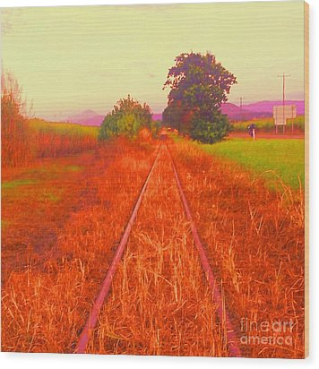 Country Tracks Wood Print by David Peters