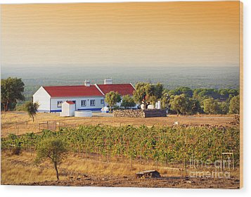 Countryside House Wood Print by Carlos Caetano