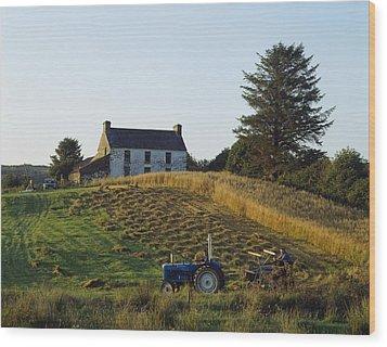 County Cork, Ireland Farmer On Tractor Wood Print by Ken Welsh