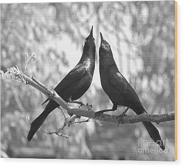 Wood Print featuring the photograph Courtship by Jan Piller