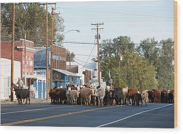 Wood Print featuring the photograph Cow Town by Gary Rose