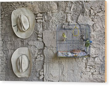 Wood Print featuring the photograph Cowboy Hats And Parakeets by Craig Lovell