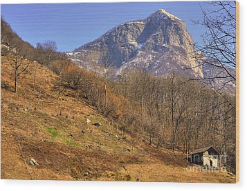 Cowhouse And Snow-capped Mountain Wood Print by Mats Silvan