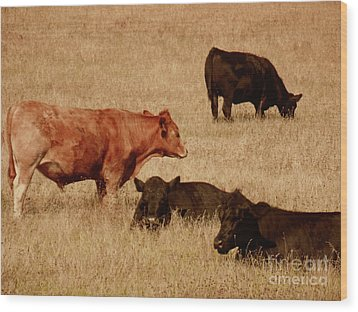 Cows Wood Print by Methune Hively
