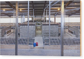 Cowshed Interior Wood Print by Jaak Nilson