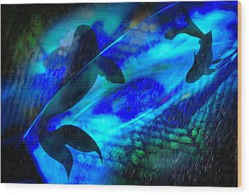 Wood Print featuring the photograph Coy Koi by Richard Piper