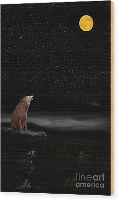 Wood Print featuring the photograph Coyote Howling At Moon by Dan Friend