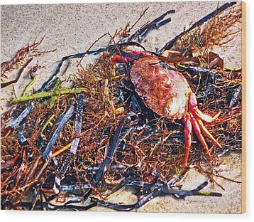 Wood Print featuring the photograph Crab Boil by William Fields