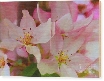 Crabapple Floral Paint Wood Print by Donna Munro
