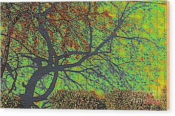 Crabapples West Acid Pop Wood Print by Feile Case