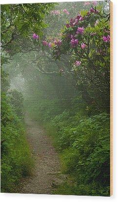 Craggy Path 2 Wood Print by Joye Ardyn Durham