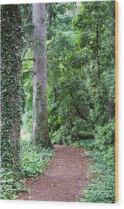 Cranbrook College Botanical Gardens Wood Print by Linda Gardner-Goos