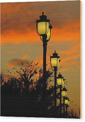 Cranes Roost Lights Wood Print