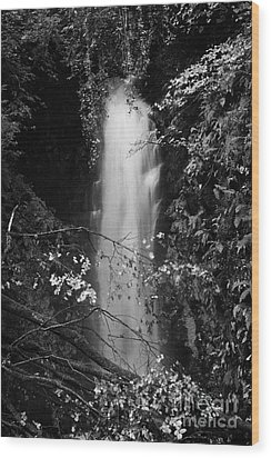 Cranny Falls Waterfall Carnlough County Antrim Northern Ireland Uk Wood Print by Joe Fox
