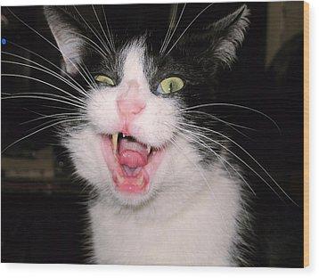 Crazy Cat Wood Print