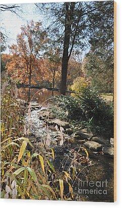 Creek Wood Print by Denise Ellis