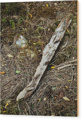 Creek Driftwood Wood Print by Ron St Jean