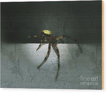 Creepy Spider Wood Print by Christy Bruna