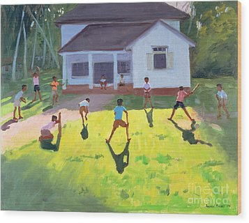Cricket Wood Print by Andrew Macara